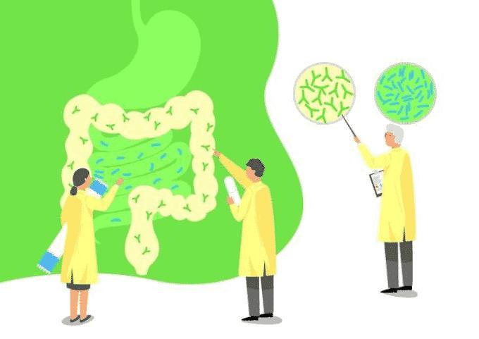 유산균이 중요한 이유