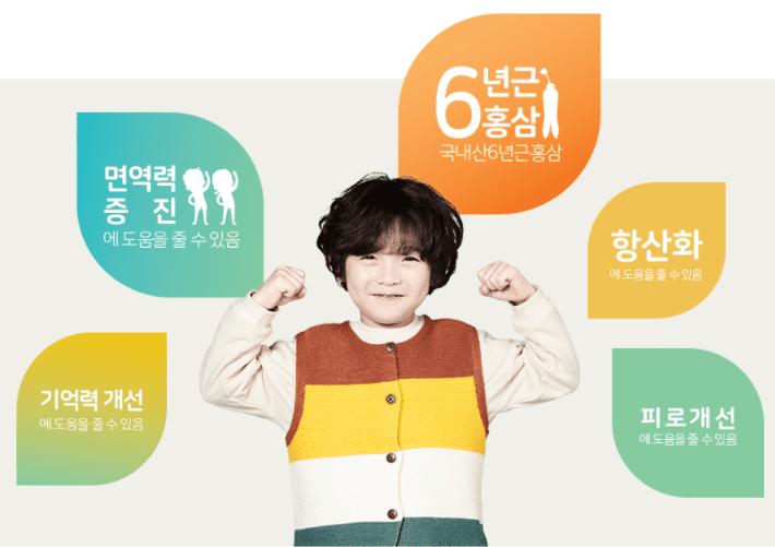 아이클타임 성분 - 홍삼
