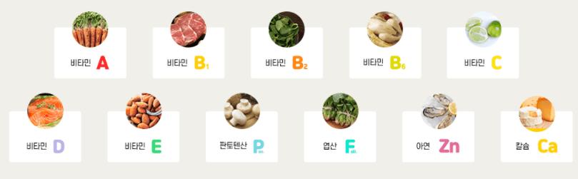 아이클타임 성분 - 필수영양소